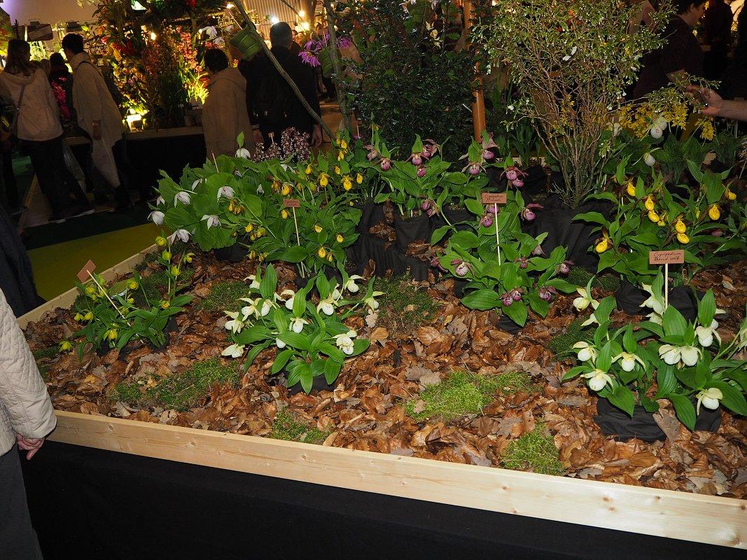 gartenwerkstatt schreiner jydsk orchide klub. Black Bedroom Furniture Sets. Home Design Ideas